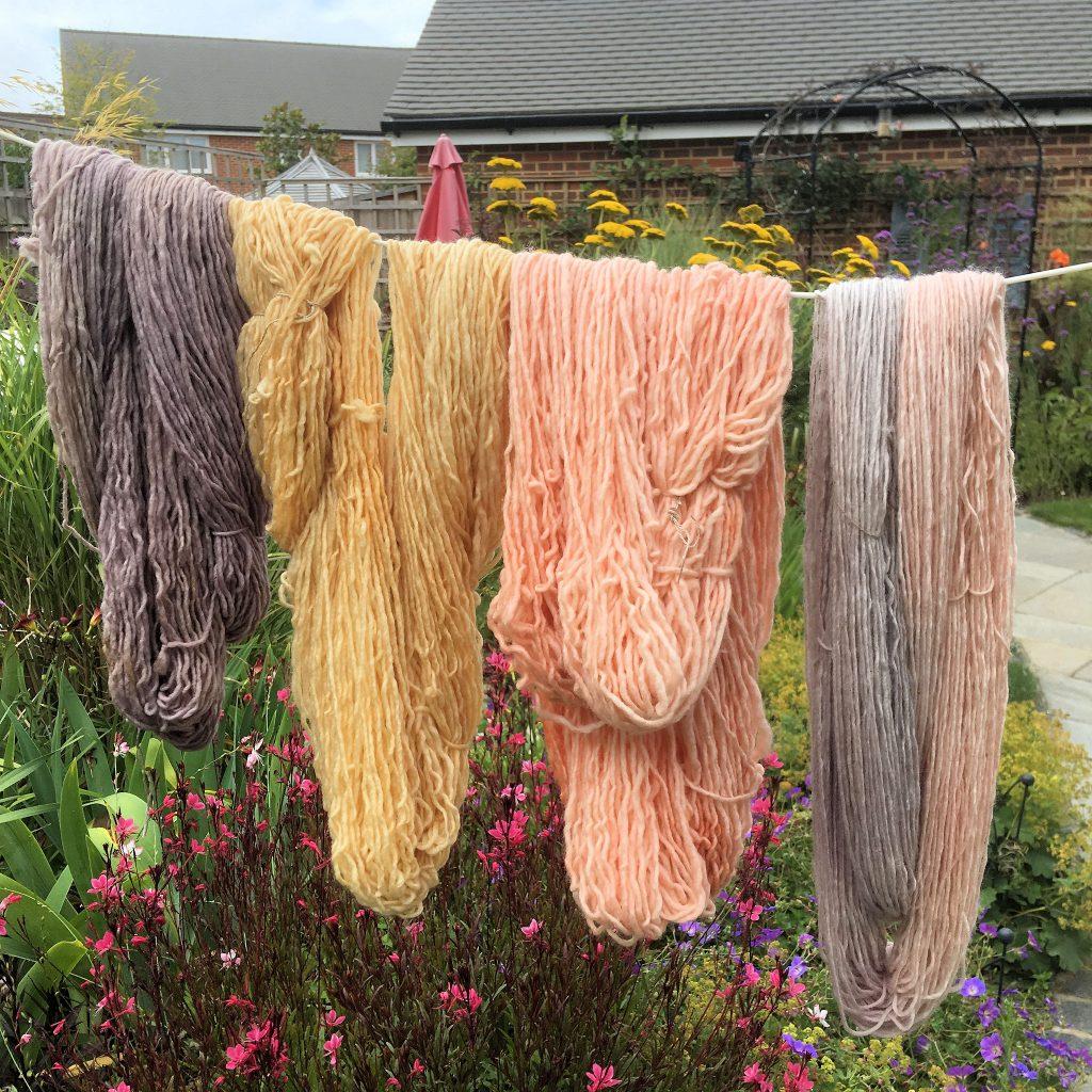Merino Plant Dyed Single Ply Yarn