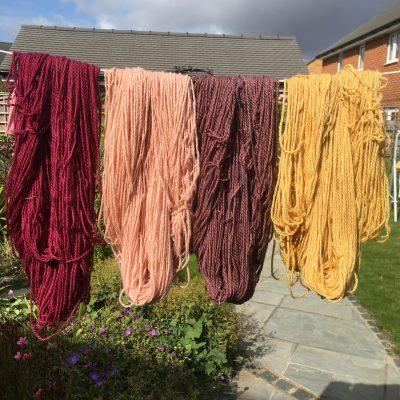 Plant Dyed Aran Wool yarn