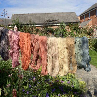 Plant Dyed Organic Merino wool